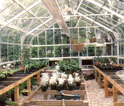 Freesanding Greenhouse
